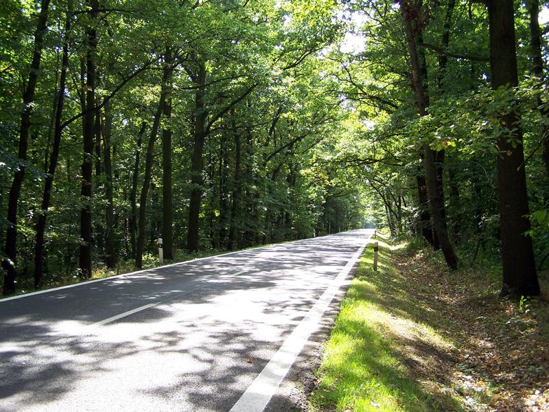 cesta z Oseka